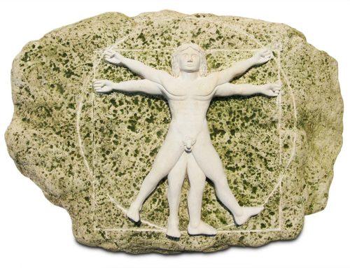 Vitruvianischer Mensch, Da Vinci
